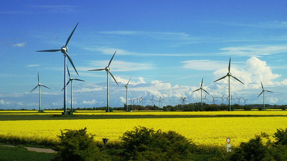 Green & Circular Economy: facciamo un po' di numeri